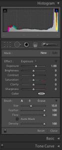 Adobe Lightroom Develop Editing Panel