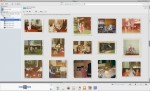 Scanned photos in Picasa Library View Mode