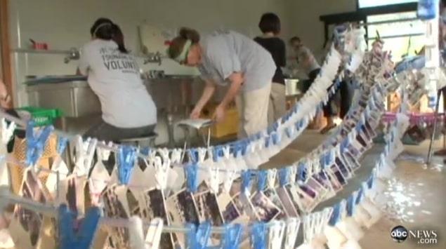 Thousands photos drying after Japan's tsunami