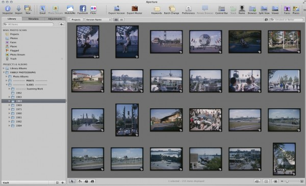 Thumbnail view of slides I scanned and imported into Aperture