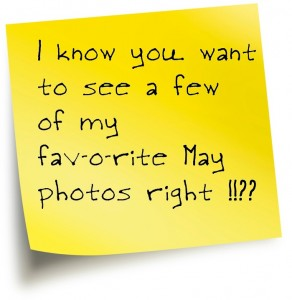 "Post it note that reads ""I know you want to see a few of my favorite may photos right?"""