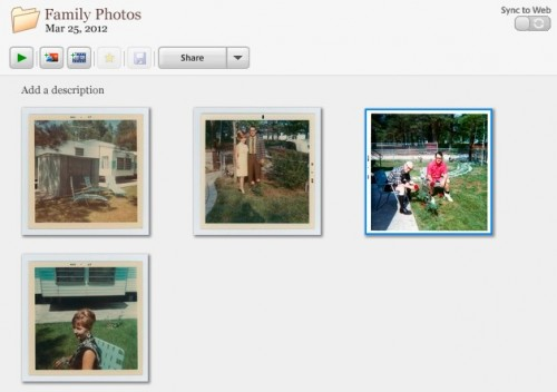 One photo selected from 4 in Picasa