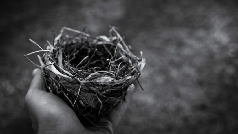 Hand holding empty bird next (black and white)