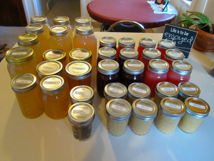 table covered with 30+ small jars of colorful fruit juices